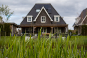 What can you use a bridge loan for?